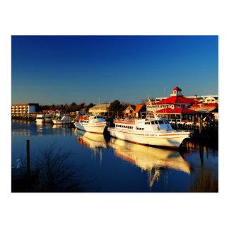 The USA - Delaware - Fisherman' S Lewes Wharf Postcard