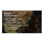 The Valley of Linth (Lintthal) and the Todi, Glaru Business Card Templates