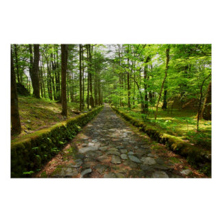 The valley of the Karuizawa happiness Print