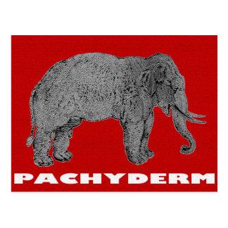 The venerable Pachyderm Postcard