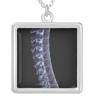 The Vertebral Column 3 Silver Plated Necklace