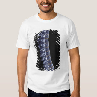The Vertebral Column 3 Tee Shirt