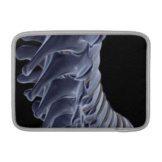 The Vertebral Column Sleeve For MacBook Air