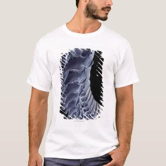 The Vertebral Column T-Shirt