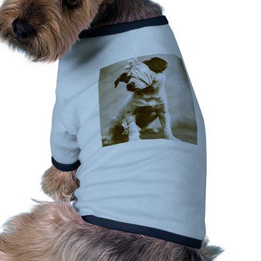 the victor doggie tee shirt