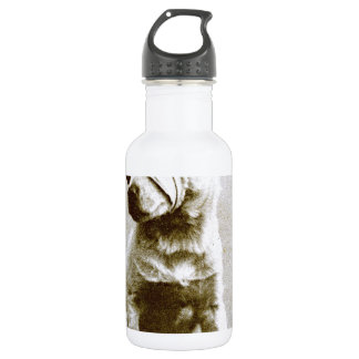the victor 18oz water bottle