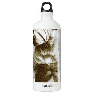 the victor SIGG traveler 1.0L water bottle
