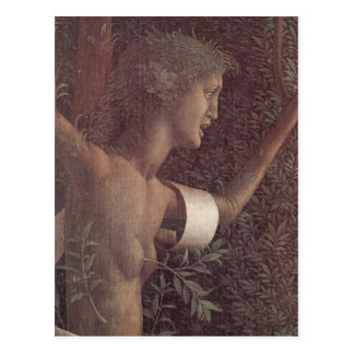 The victory of virtue by Andrea Mantegna Postcard
