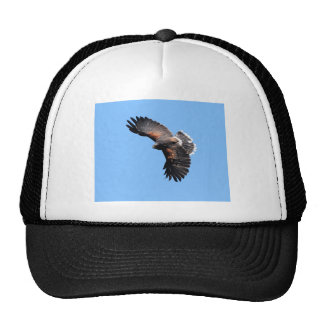 The view from above trucker hat