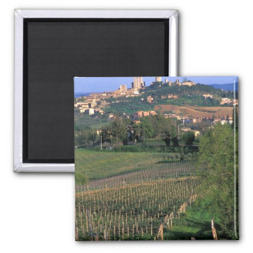 The village of San Gimignano sits in the rolling 2 Inch Square Magnet