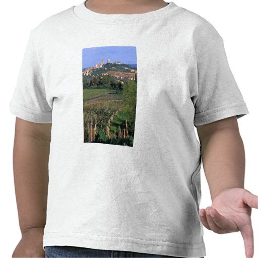 The village of San Gimignano sits in the rolling Tees