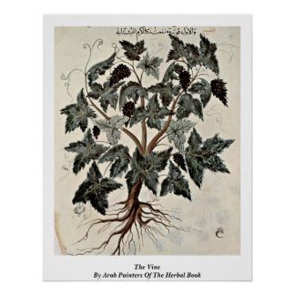 The Vine By Arab Painters Of The Herbal Book Posters