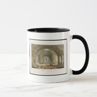 The Vinery, from 'Fragments on the Theory and Prac Mug