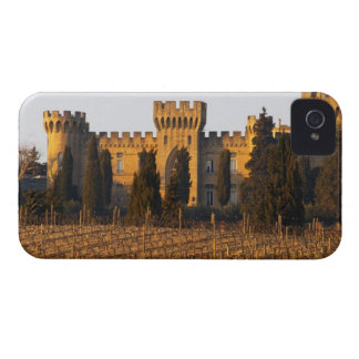 The vineyard with syrah vines and the chateau blackberry case