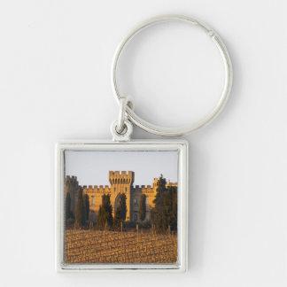 The vineyard with syrah vines and the chateau keychain