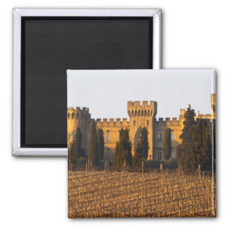 The vineyard with syrah vines and the chateau magnet