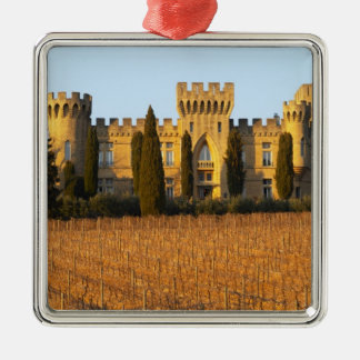 The vineyard with syrah vines and the chateau metal ornament