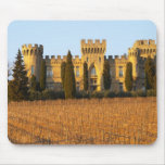 The vineyard with syrah vines and the chateau mouse pad