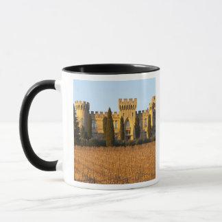 The vineyard with syrah vines and the chateau mug