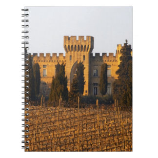 The vineyard with syrah vines and the chateau notebook