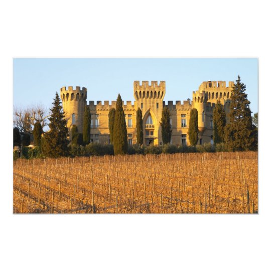 The vineyard with syrah vines and the chateau photo print