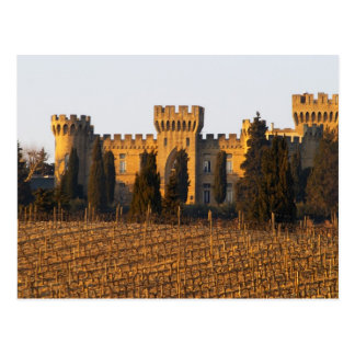 The vineyard with syrah vines and the chateau postcard