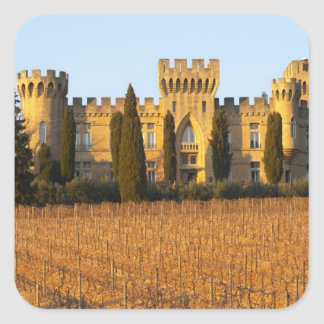 The vineyard with syrah vines and the chateau square sticker