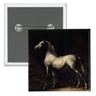 The Vintage Horse Pinback Buttons
