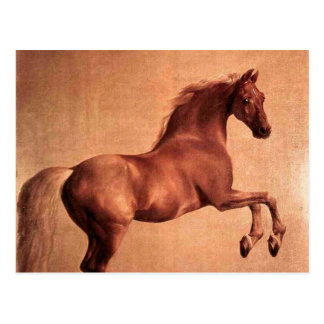 The Vintage Horse Postcard