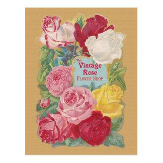 The Vintage Rose Flower Shop Sign Postcard