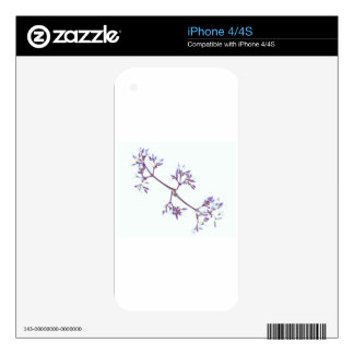 The Violet Flower By The Cat Project Skins For The iPhone 4