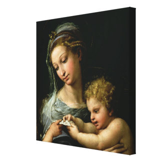 The Virgin of the Rose, c.1518 Canvas Print