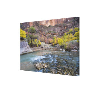 The Virgin River in autumn in Zion National Park Stretched Canvas Print