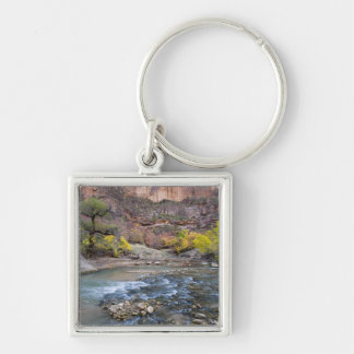 The Virgin River in autumn in Zion National Park Keychain