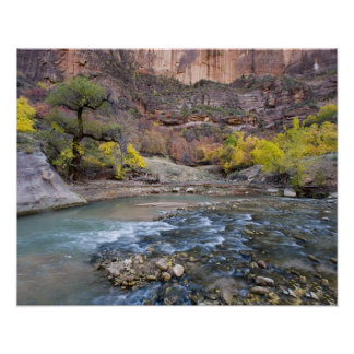 The Virgin River in autumn in Zion National Park Poster
