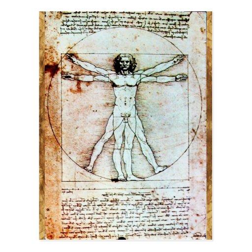 THE VITRUVIAN MAN , Antique Brown Parchment Postcard