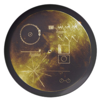 The Voyager Golden Record Dinner Plate