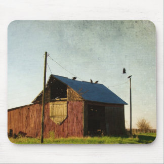The Vultures and the Barn Mouse Pad