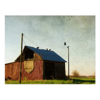 The Vultures and the Barn Postcard