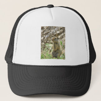 The Waiting Trucker Hat
