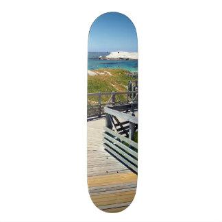 The walk down toward Boulders Beach near Cape Town Skateboard