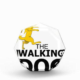 The walking dog award