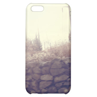 The Wall *Iphone case v.1* Cover For iPhone 5C