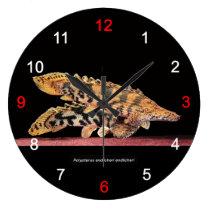The wall-mounted clock of Polypterus endlicheri en