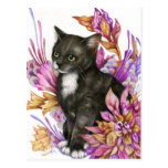 The Wanderer - Tuxedo Cat Art Postcard
