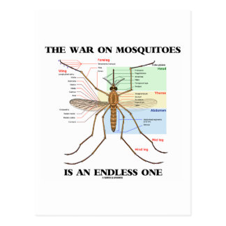The War On Mosquitoes Is An Endless One (Mosquito) Postcard