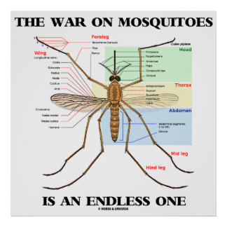 The War On Mosquitoes Is An Endless One (Mosquito) Posters