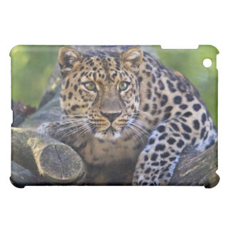 The Watcher iPad Speck Case Cover For The iPad Mini