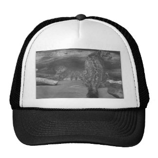 The watchers hats
