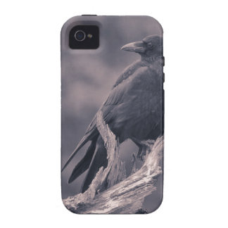 The watching Crow Vibe iPhone 4 Cases